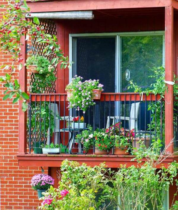 Cool Balcony Ideas: Cool Balcony Greenery Ideas