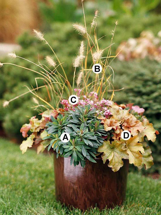 Useful tips for gardening in autumn