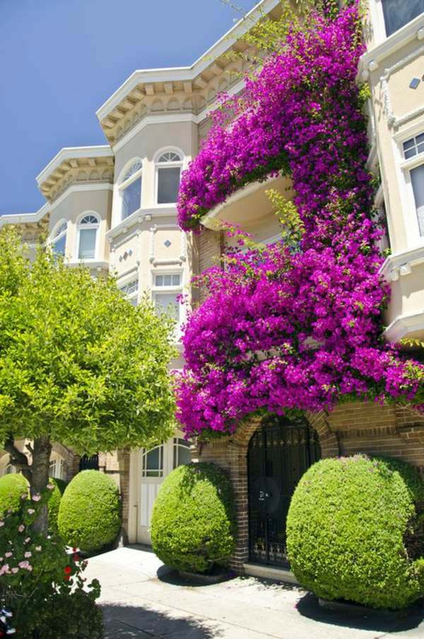 55 Balcony Greenery Ideas Choose Flowers For Balcony