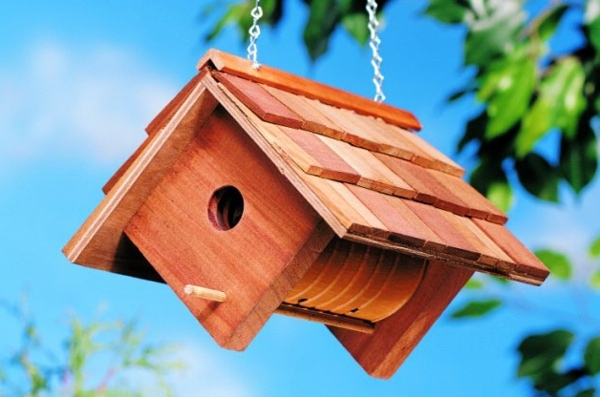 Build bird house itself - DIY instructions and 40 ideas for you