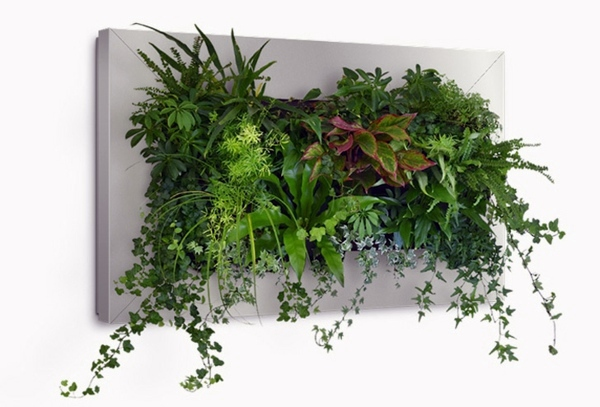 Wall Decoration With Plants Live Picture Refreshes The Air And