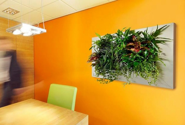 Wandgestaltung - Wall decoration with plants - Live Picture refreshes the air and ambience