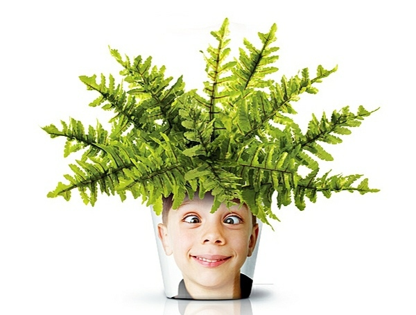 Modern Planters with Face - Funny cool decoration ideas