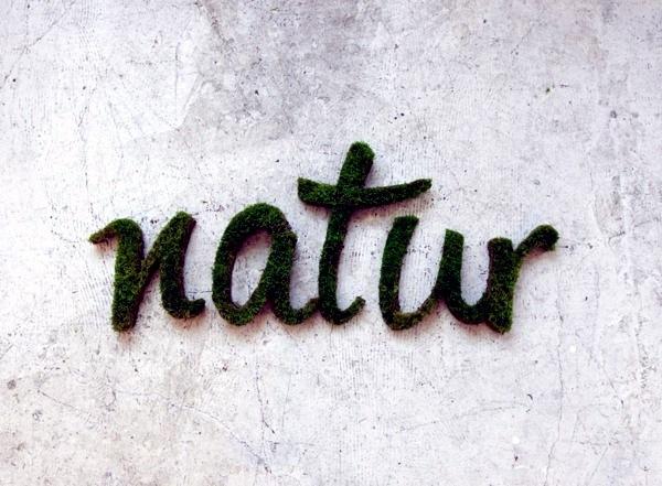 """Art - Create moss graffiti and host a """"green"""" message"""