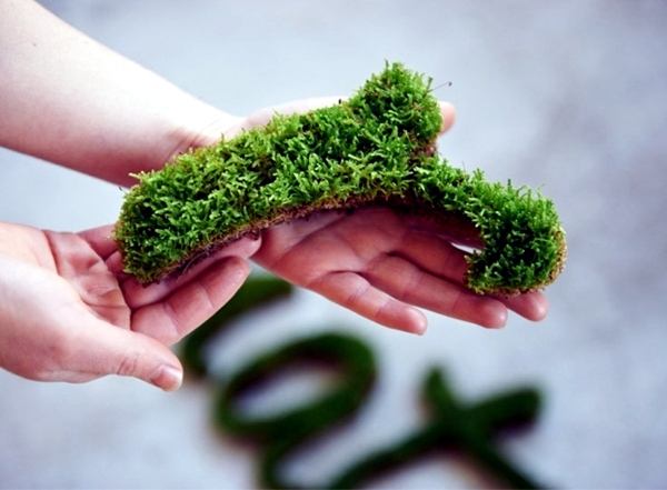 """Contemporary - Create moss graffiti and host a """"green"""" message"""