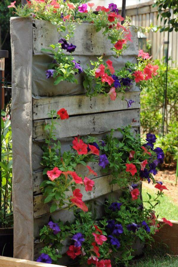 Creating A Vertical Garden And Flower Diy From Euro