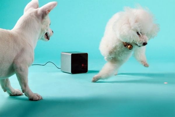 Gadgets - Play with your pet by your smartphone by PetCube