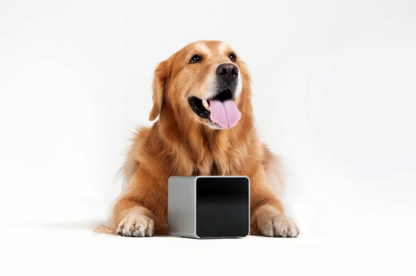 Play with your pet by your smartphone by PetCube