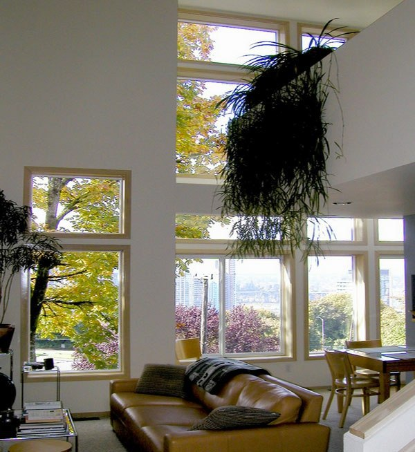 High Ceiling Hanging Indoor Plants And Patio For The Purpose Of Green House