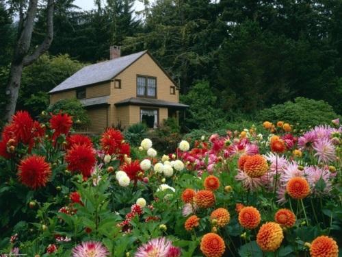 Gartengestaltung - The successful garden design requires effort, effort, and a strong desire