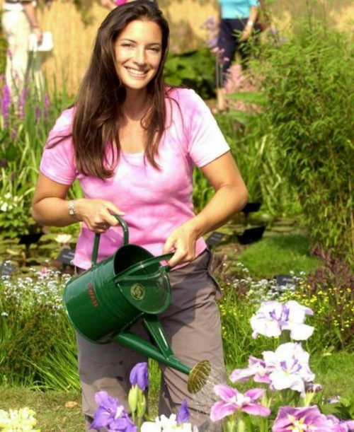 The successful garden design requires effort, effort, and a strong desire