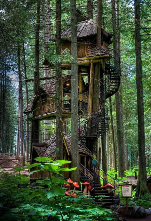 Architektur - The most beautiful tree houses in the world