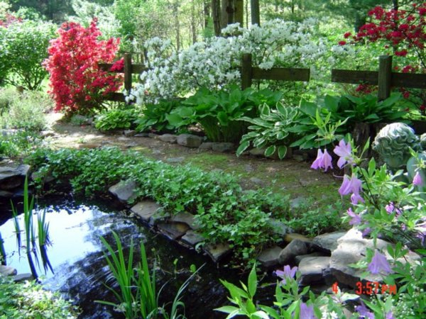 Beautify your yard - ideas for a welcoming atmosphere of spring in the garden
