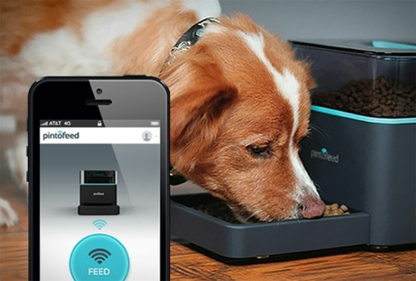 Gadgets - Feed the pet via smartphone