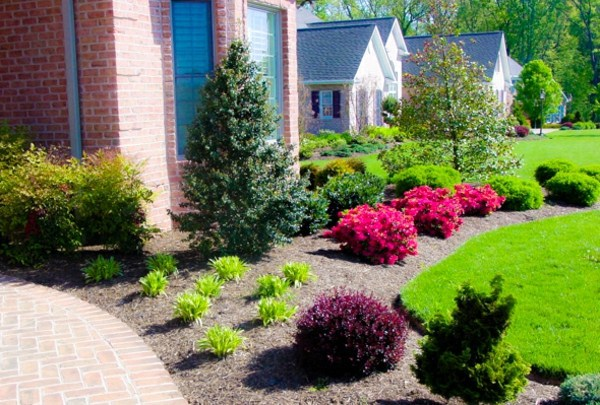 With Gravel Front Garden Design Photos And Tips For You