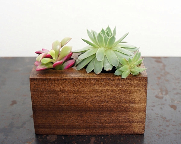 25 Modern Ideas For Flower Pots And