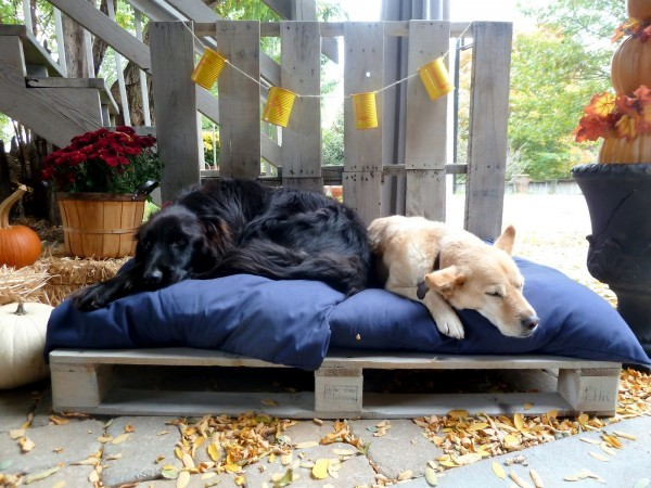 DIY Deko - DIY wooden dog beds from Euro pallets