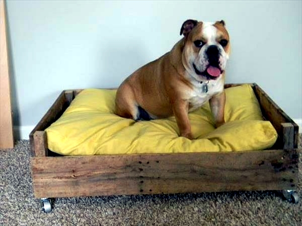 Haustiere - DIY wooden dog beds from Euro pallets