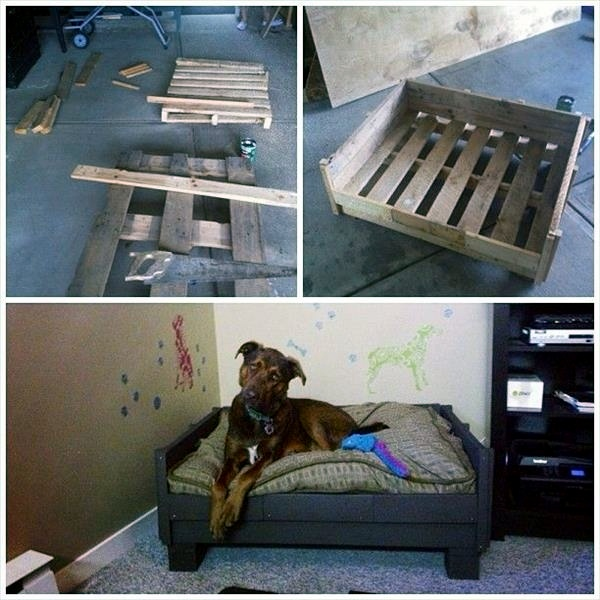 wood dog beds
