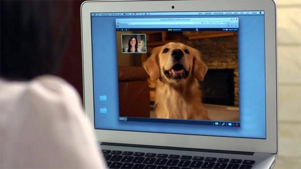 Gadgets - PetChatz webcam and Feeder