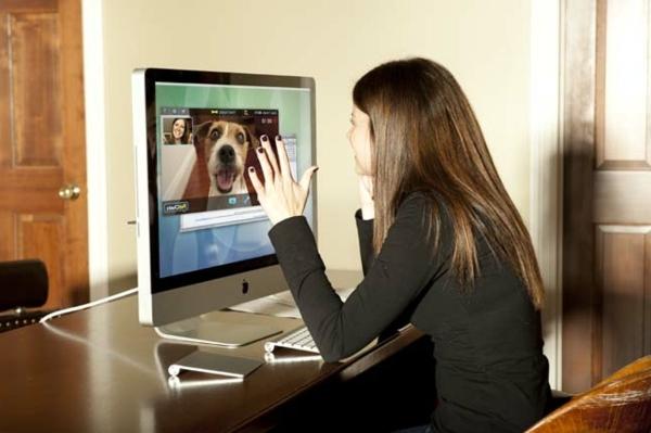 PetChatz webcam and Feeder