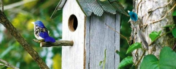 Bastelideen - Build bird house itself - you contribute to wildlife