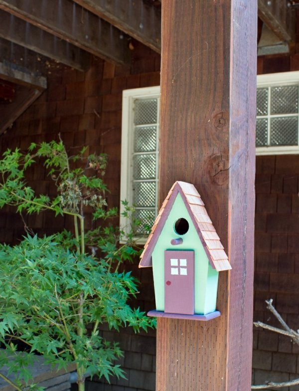 Build bird house itself - you contribute to wildlife